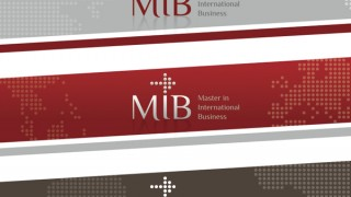 Mib Master visual identity